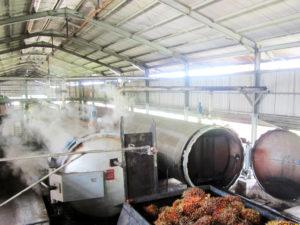 Mengulik Lebih Dalam Sterilizer di Pabrik Sawit